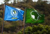 EASF and AU Flags